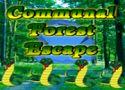 Communal forest escape - kijutós játék