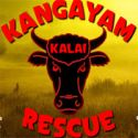 Kangalam Kalai rescue - escape game