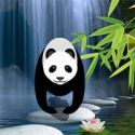 Save the girl from bamboo forest - szabaduló játék